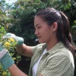 Gardening Spring Chore Checklist