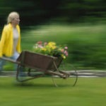 Spring Clean Up for Lawns and Gardens - pushing the flower cart