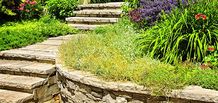 Stone-Walkway-with-Retaining-Planter