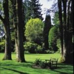 Energy Saving Landscape Design - shady area with bench