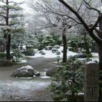 Winterize Your Irrigation System - winter garden scene