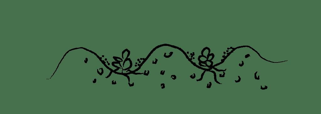 garden bed prep