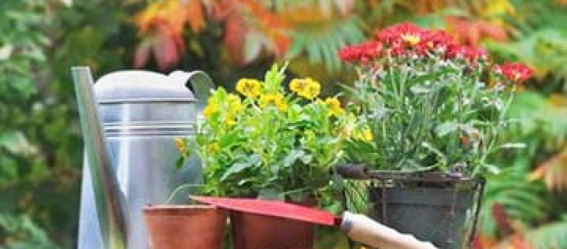 Fall-Garden-Flower-Planting