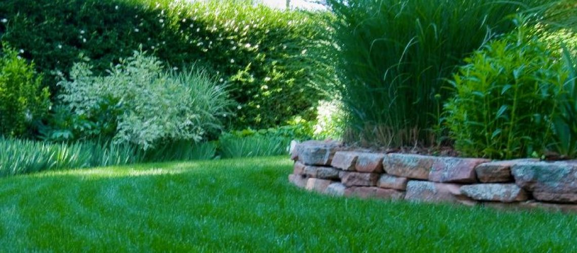 Grass Clippings - Good or Bad - shady area