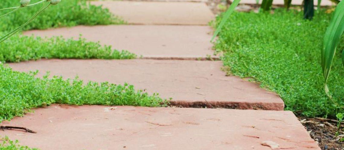 Selecting Landscaping Stone - stone walkway