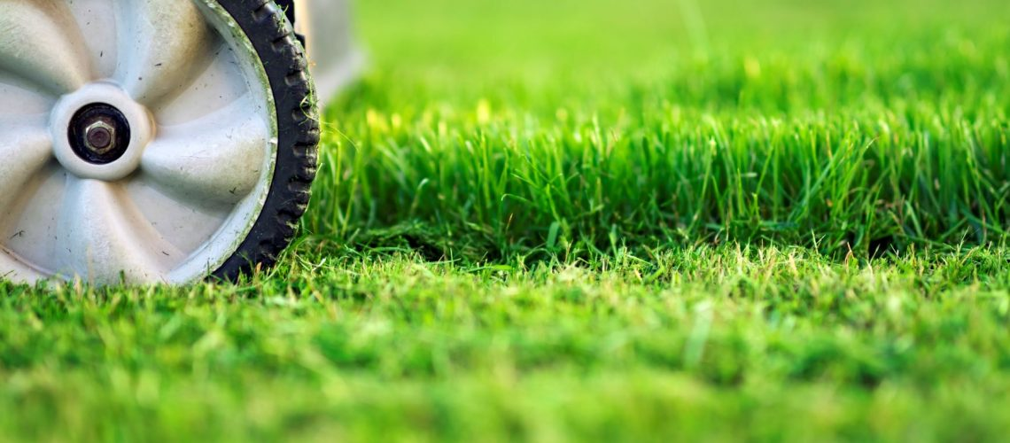 iStock-1138192109 - Lawn Mowing.Med